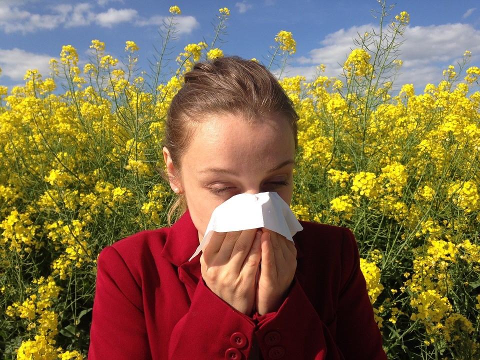 Allergen Screen Suppliers and Manufacturer