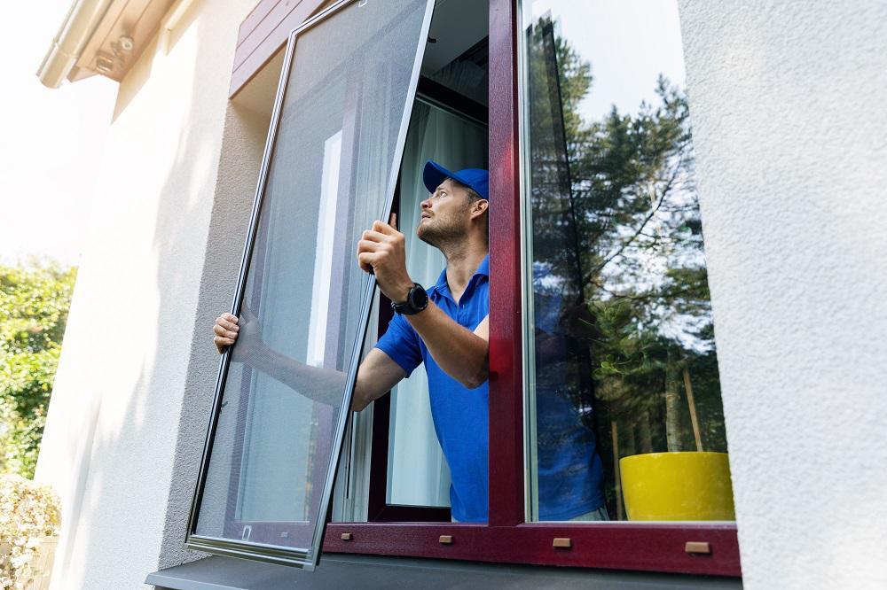 Repair Window Screens Keep Pests Out